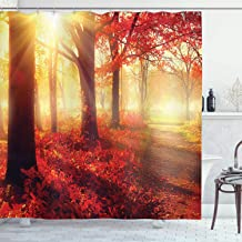 Ambesonne Woodland Shower Curtain, Sun Beams Through Misty Old Forest in Fall Season Morning View Dreamy Picture, Cloth Fabric Bathroom Decor Set with Hooks, 70
