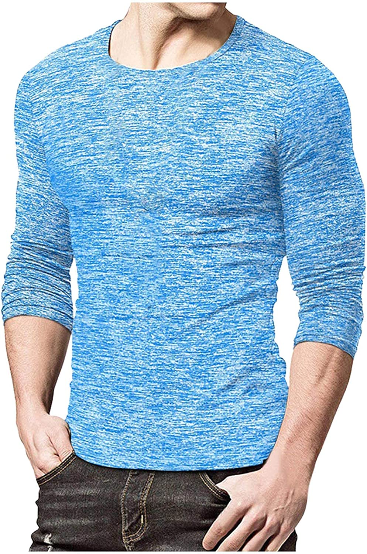 Graphic Shirts for Men Cute Crewneck Sweatshirt Autumn Fall Winter Pullover T-Shirt Slim Fit Tops 3D Shirt Gift