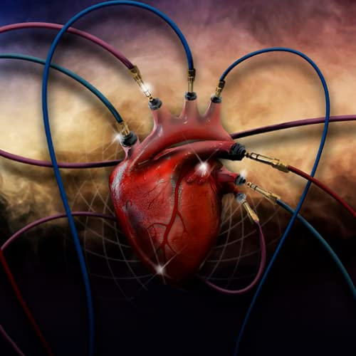 Heart Sounds : Lung Sounds