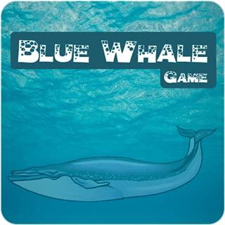 Anti-stress Blue Whale
