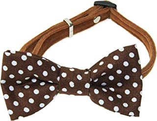 amy2004marie Cat Pet Brown & White Dots Cotton Bow Tie on a Black Velvet Breakaway Collar