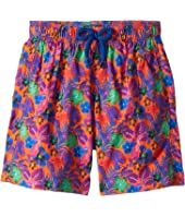 Vilebrequin Kids - Porto Rico Jirise Swim Trunks (Little Kids/Big Kids)