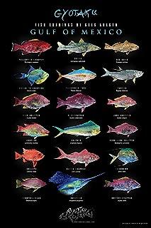 fish of louisiana poster