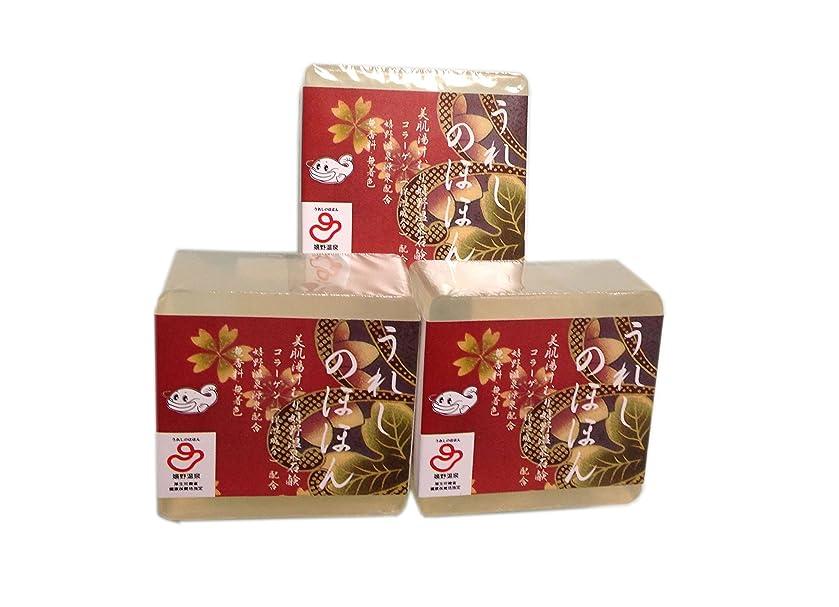鋭くしばしばほのめかす嬉野温泉(spa-ureshino) うれしのほほん 石鹸セット 3個セット