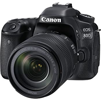 Canon EOS 80D Digital SLR Kit with EF-S 18-135mm f/3.5-5.6 Image Stabilization USM Lens (Black) (Renewed)
