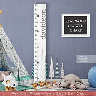 Wooden Kids Growth Height Chart Ruler for Boys and Girls Painted (The Davidson) by Back40Life - Express Edition