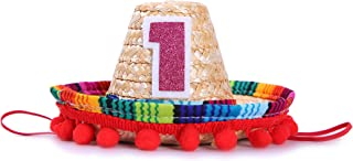 Mini Sombrero Hats for 1st Birthday - Fiesta Cupcake Toppers for Mexican Party Decorations, First Birthday Hat for Uno Party, Fiesta Party Supplies (Fiesta Cupcake Toppers)