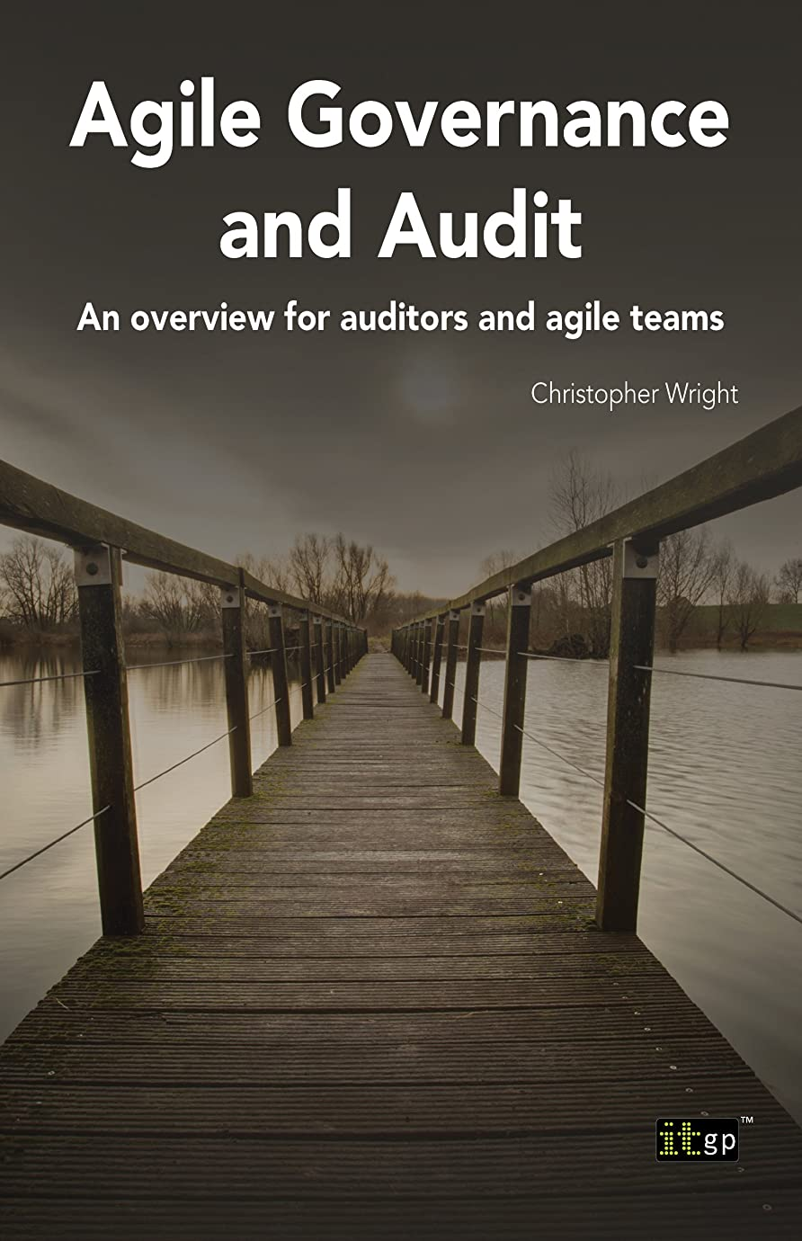 動詞皮肉なカヌーAgile Governance and Audit (English Edition)