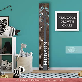 Wooden Kids Growth Height Chart Ruler for Boys and Girls Painted (The Hudson) by Back40Life - Express Edition