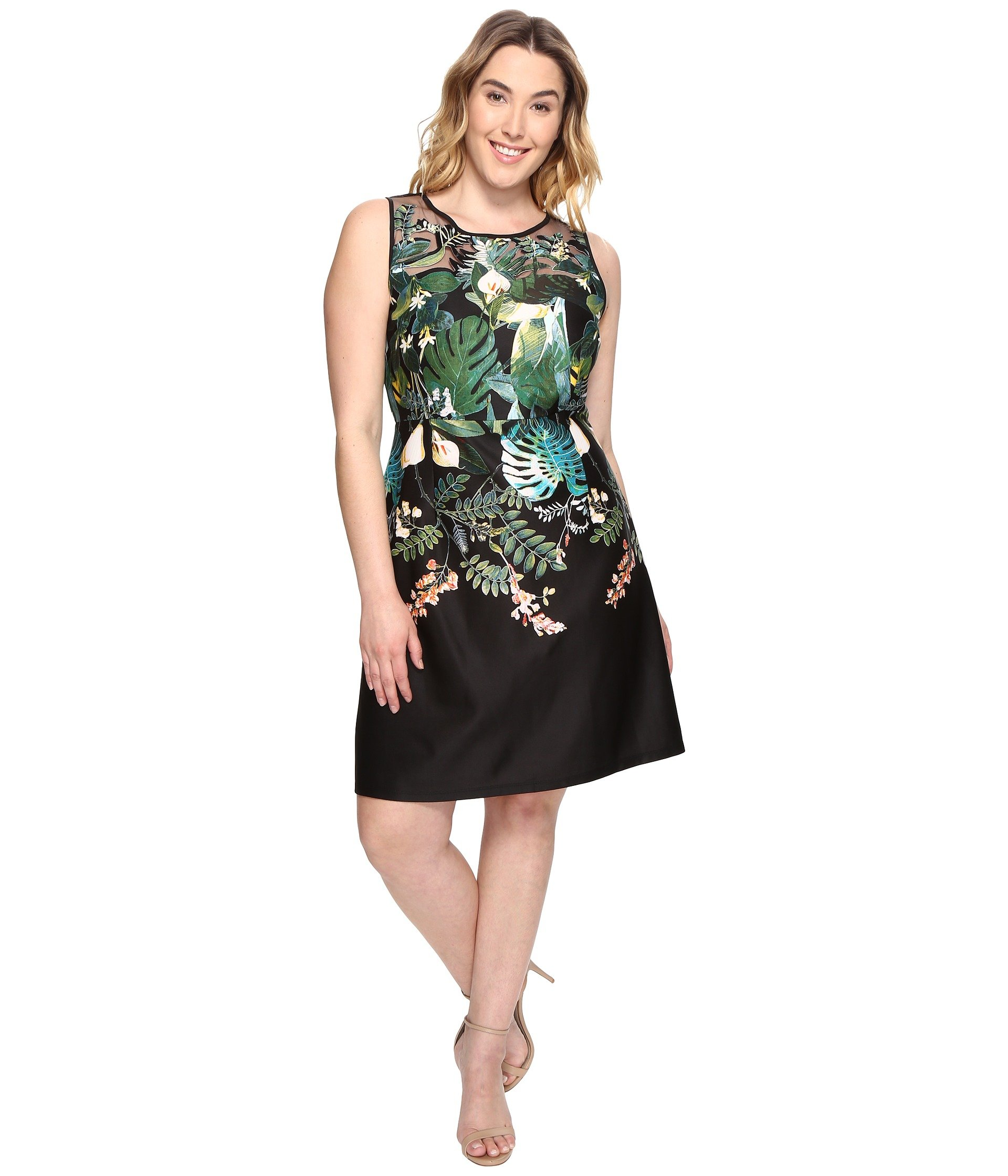 Adrianna Papell Plus Size Dresses