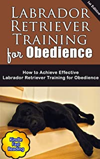 Labrador Retriever Training for Obedience: How to Achieve Effective Labrador Retriever Training for Obedience