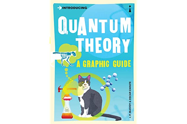 Amazon Introducing Quantum Theory A Graphic Guide Introducing