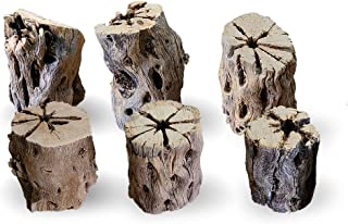 SunGrow Cholla Wood for Air Plants, Whimsical Hobo Chic Planters for Spanish Moss, Book Dividers, Paper Weights and More, ...