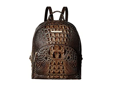 Brahmin Melbourne Mini Dartmouth Backpack (Chicory) Handbags