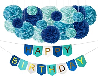 DIY Blue Birthday Decorations - Happy Bday Party Banner Sign and DIY Tissue Paper Pom-Poms Decor Kit for Boys Men Girls Kids - Turquoise Blue Gold - Princess Shark Theme Supplies