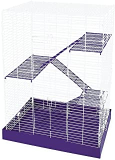 cage size for two rats