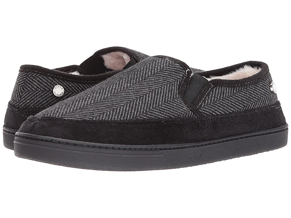 Steve Madden Pscott (Grey Fabric) Men
