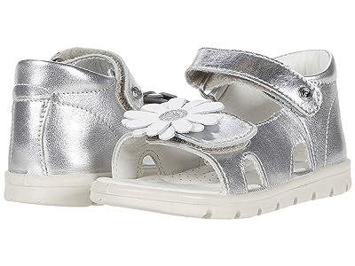 Naturino Falcotto Coromel SS20 (Toddler) (Silver) Girl