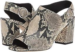 Roccia Python Snake