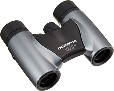 Olympus 10x21 Rc Ii Fernglas Mit Tasche Silber Kamera