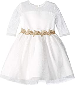 3/4 Sleeve Glitter Mesh Dress with Embroidered Lace Trim (Little Kids)