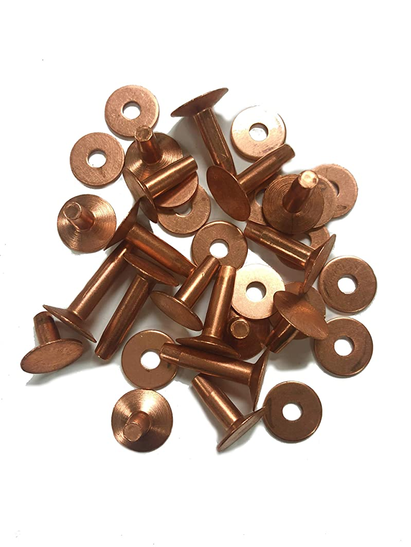 Copper Rivets & Burrs, Assorted Lengths, No. 9 Size, One Pound Box, Rust-Proof - Ideal for Belts, Halters, Bridles, Bags, Collars, Bracelets, Leather-Crafting, Tack Repairs- Approx 130 Pieces Each