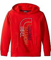 The North Face Kids - Logowear Pullover Hoodie (Little Kids/Big Kids)