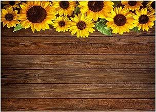Best paper sunflower backdrop Reviews