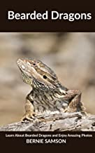 Bearded Dragon: Learn About Bearded Dragon and Enjoy Amazing Photos