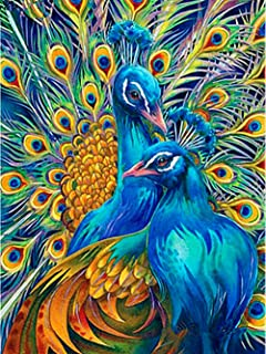 Diamond Painting Kits for Adults Full Drill - 5D Diamond Art Kits with Painting by Number Kits - Great Decor for Home,Living Room,Office,Kitchen,Shop (Peacock)