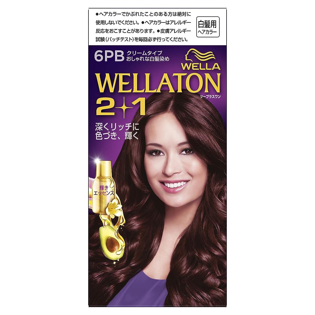 満了情熱数値ウエラトーン2+1 クリームタイプ 6PB [医薬部外品](おしゃれな白髪染め)