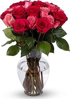 Benchmark Bouquets 2 Dozen Blushing Beauty Roses, With Vase (Fresh Cut Flowers)