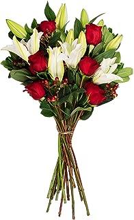 Benchmark Bouquets Red Elegance, No Vase (Fresh Cut Flowers)