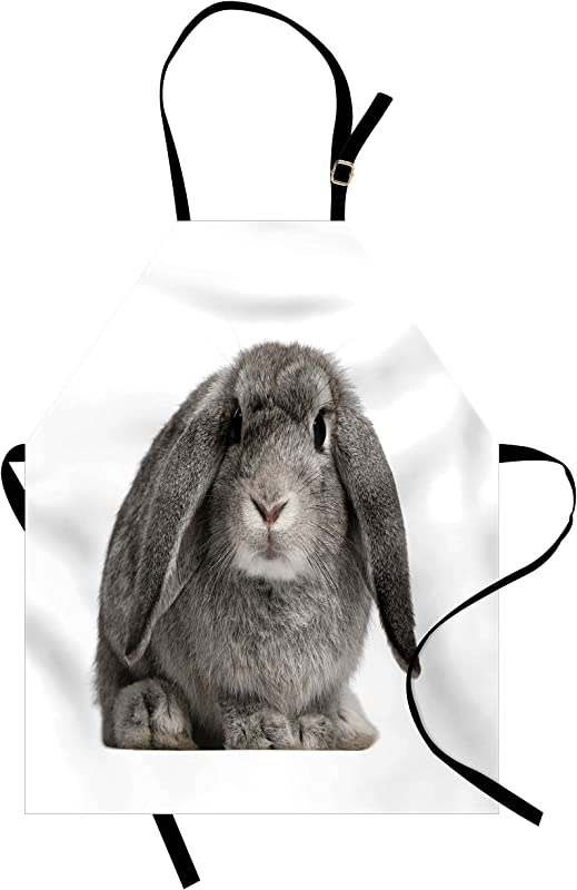 Lunarable Rabbit Apron Lop Rabbit Portrait Oryctolagus Cuniculus In Sitting Position White Background Unisex Kitchen Bib Apron With Adjustable Neck For Cooking Baking Gardening Grey Pale Grey