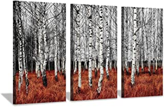 Hardy Gallery Forest Landscape Canvas Picture Artwork: Birch Trees Print Painting on Canvas Set for Office (26'' x 16'' x 3 Panels)