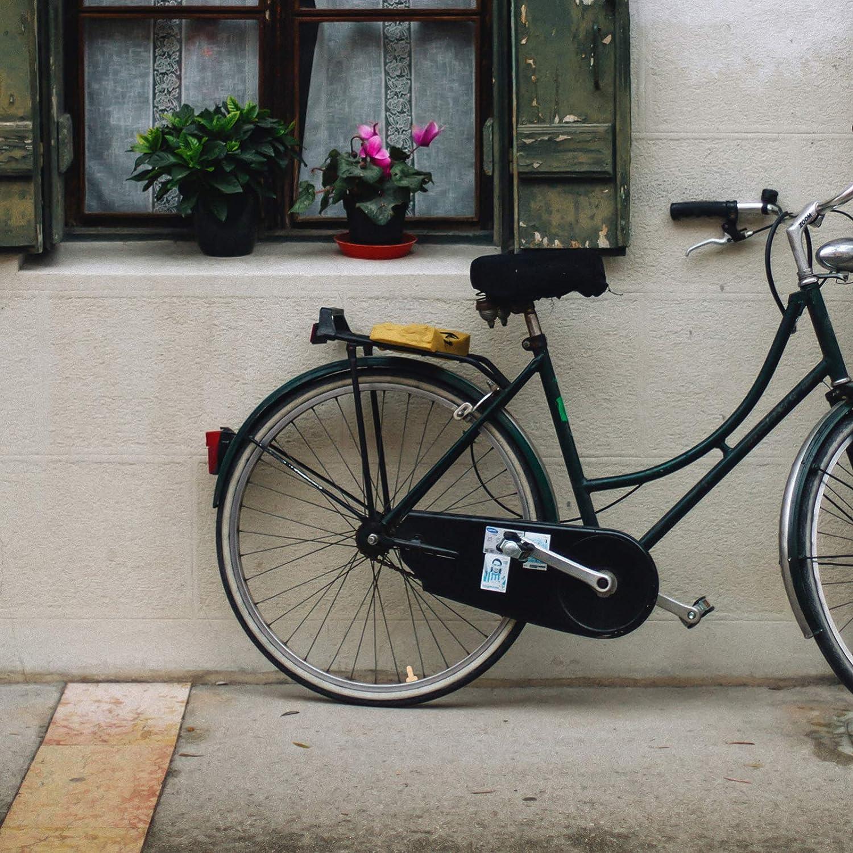 BESPORTBLE 4Pcs di Burla Tappo dello Stelo della Valvola Pennis Tappi Valvola del Pneumatico della Polvere della Copertura Tappo Pneumatico per Auto Camion Moto Moto Biciclette Addio al