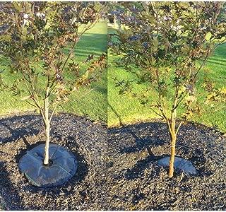 TreeDiaper Tree Hydration Mat