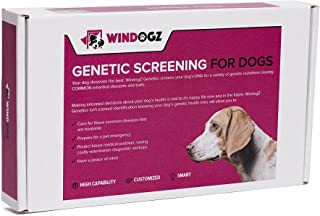 Windogz Genetics Screens Your Dog's DNA for Genetic mutations Causing Over 75 of The Most Common Inherited Diseases and Tr...