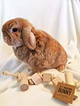 Toy for pet bunny rabbit - rope chew toy