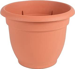 bell planter