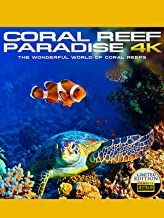 Coral Reef Paradise