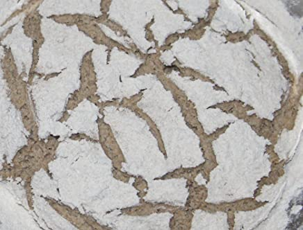 Levadura fresca biológica - Masa madre de harina de centeno Demeter - Levadura vegana - Contenido