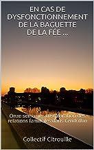 EN CAS DE DYSFONCTIONNEMENT DE LA BAGUETTE DE LA FÉE ...: Onze semaines d'exploration des relations familiales dans Cendri...