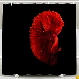 Pamime Waterproof Eco-Friendly Polyester Shower Curtain Hooks Red Siamese Fish Half Moon Movement in Black Background Shower Curtains 72X72Inches Bathroom