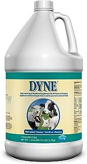 dyne for sheep