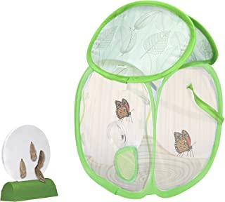 Educational Insights GeoSafari Jr. Butterfly Bungalow, Habitat To Grow Butterflies, Science Project, Includes Certificate for Caterpillars