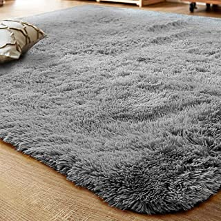 LOCHAS Ultra Soft Indoor Modern Area Rugs Fluffy Living Room Carpets Suitable for Children Bedroom Home Decor Nursery Rugs 2' X 3'(Gray)
