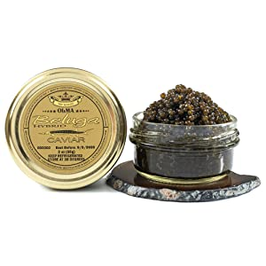 OLMA Beluga Hybrid Caviar - Rated Top Black Caviar in the World, Exclusively from OLMA - Overnight Delivery - 2 Ounce Glass Jar