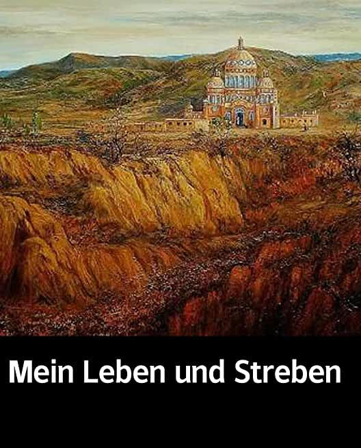 Illustrated Mein Leben und Streben: A novel about a sectSelected educational books (German Edition)