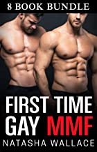 First Time Gay MMF Bundle: 8 Story MMF Anthology Collection